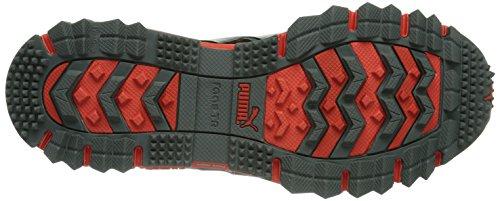 Puma Faas 500 Tr Gtx®, Chaussures de trail homme Gris (Tradewinds/Turbulence/Black)
