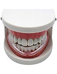 DANMEI 1PCS Profession Tala paradenti denti dentale Bruxismo prevenire la notte di sonno aiuti strumenti