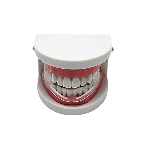 SMARTrich Tala Dientes bruxismo dental protector bucal