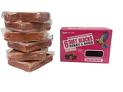 Suet To Go Berry and Bugs Blocks by Su-Bridge Pet Supplies Ltd