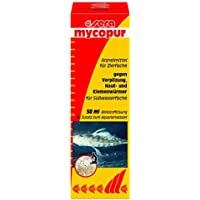 Sera 02230 mycopur - Arzneimittel für Zierfische gegen Verpilzungen (Mykosen)