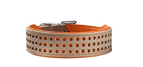 Hunter Hundehalsband Basic Marbella, Größe 32, stein/orange -