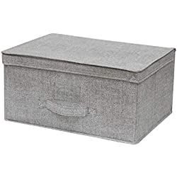 Cflagrant® Boite de Rangement Tissu Pliable Renforcé L Dim: 34x24x15cm avec Couvercle et Poignée (Gris Clair)