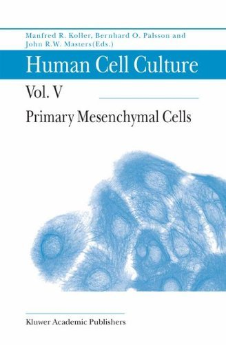 Primary Mesenchymal Cells: Primary Mesenchymal Cells v. 5 (Human Cell Culture)
