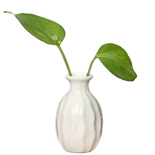 k Vasen Creative Vase Handgefertigt Keramik Vase für Home Deko/Office/Geschenk , 5*8*3cm (Weiß) (Kleine Weiße Vase)
