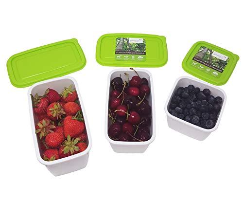 greenline 9 Gefrierdosen Vegan Natürlicher Bio-Kunststoff aus Zuckerrohr 4X 0.5 l + 3X 0,75 l + 2X 1 l BPA frei Robust Bruchsicher Spülmaschinenfest Mikrowellengeeignet