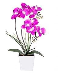 Idea Regalo - HOMESEASONS - Vaso per Orchidee Artificiali Illuminato a LED, Funzionamento a Batteria, 9 luci Raissa metallizzate