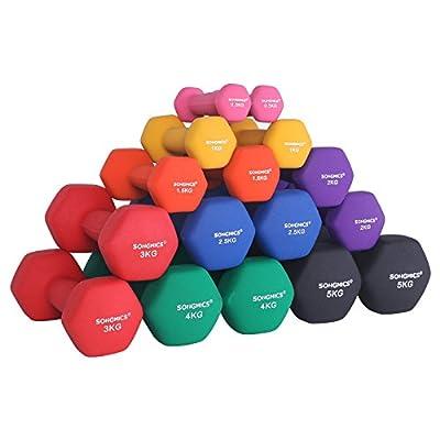 SONGMICS 2er-Set Hanteln 0,5 kg, 1 kg, 1,5 kg, 2 kg, 3 kg, 4 kg & 5 kg Kurzhantel Gymnastikhantel Vinyl in verschiedenen Gewichts- und Farbvarianten von SONGMICS