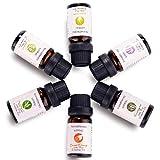 Best Olio Oli Salute & Bellezza naturale di eucalipto - Oli Essenziali Hartu Oli Essenziali per Diffusori per Review