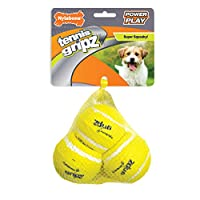 Nylabone Power Play Tennis Ball Dog Toy, Small, 3 count