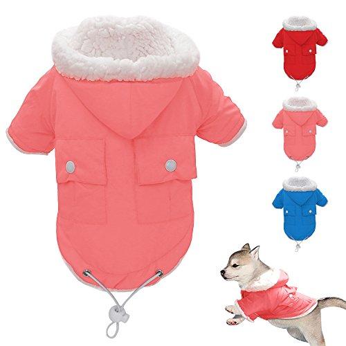 Berry kaltem Wetter Coat–Hund Puppy Weste Warm Pet Ski Jacke–Hund Bekleidung für kleine, mittel, groß und extra groß Hunde (Extra Bekleidung Kleine Hund)
