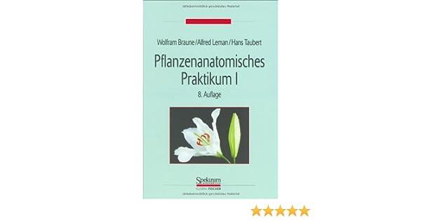 Wunderbar Pflanzenanatomie Arbeitsblatt Ideen - Mathe Arbeitsblatt ...