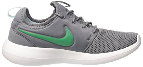 Nike Herren Roshe Two Ausbilder Grau (cool Grey / Stadio Green-mica Blue-white)