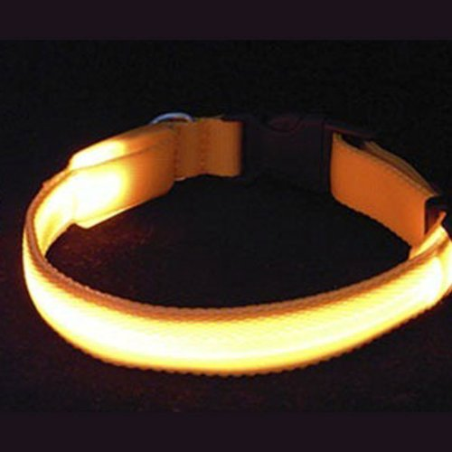 bestofferbuy-3-betriebsarten-glasfaser-blinken-led-hundehalsband-einstellbar-kleine-orange