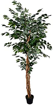 YATAI Nearly Natural Artificial Ficus Plant 2.1 Meters High Ficus Tree Fake Plant with Plastic Pot & Moss