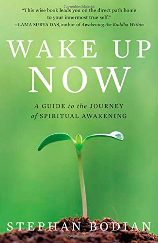 Wake Up Now: A Guide to the Journey of Spiritual Awakening por Stephan Bodian