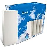 Premium Luftbefeuchter/Verdampfer aus Keramik im 4-er Set für Heizung und Heizkörper - geeignet für jeden Raum