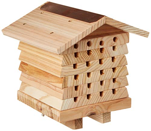 Wildlife World Ruche pour Abeilles Solitaires Interactive
