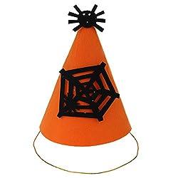 Phenovo Funny Halloween Party Felt Cone Hat Fancy Dress Ghost/Pumpkin/ Mustache/Spider - spider