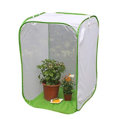 Abilie Faltbarer Insekten-Käfig für Setzlinge mit Lichtdurchlässigkeit, 60cmx60cmx90cm