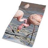 Headbands Beach Flamingos Birds Pattern Headband Men Women Headwrap Magic Head Scarf Bandana Headwear Neckerchief Polyester Balaclava Novelty Headdress Scrunchie