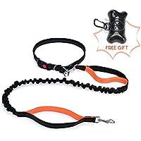 [Gesponsert]TimberRain Jogging Hundeleine Set, Freihändig Joggingleine für Alle Hunde, mit Verstellbare Bauchgurt, Flexi & Reflektierende Laufleine, 20 Stück Hundekotbeutel