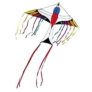 Invento 106525 Paradise Bird - Cometa, diseo de pjaro