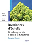 Invariances d'échelle - Des changements d'états à la turbulence