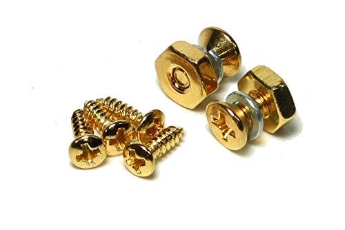 Pickguard Halterung Schrauben & Nut für Gibson Les Paul Gold Finish, Gold Metall (Schiff) aus USA