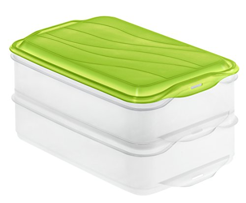 Rotho 1701905503 Aufbewahrungsbox, 2-teilig (2x 1,35 l), transparent/grün