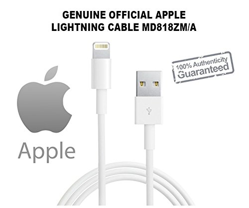 Apple MD818 Lighting Data Cable