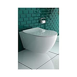 Ceramic Wall-Mounted Toilet with Nano Rimless Toilet Including Toilet seat with Soft Close Mechanism.