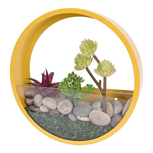 RRSHUN, fioriera da Parete Rotonda in Vetro, Vaso da Parete per Fiori in Ferro da Interno, Contenitore Verticale da Appendere alla Parete, 20 cm x 20 cm, N9000 III