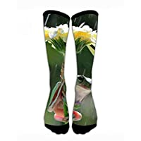 Kotdeqay Men & Women Classics Crew Socks Frog Hiding Under The Flowers Funny Crazy Unique Thick Warm Cotton