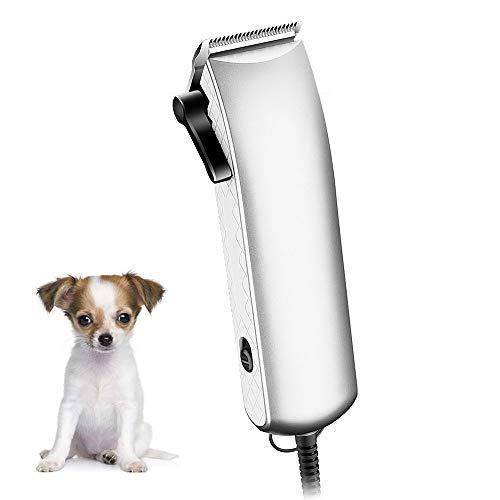 DTVX Professioneller kabelgebundener wiederaufladbarer Haustier-Trimmer mit vibrationsarmem Rasierkopf - Einfach zu konstruierendes 1,8 m langes Kabel - Geeignet für empfindliche Hunde