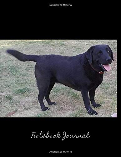 Notebook Journal: For Dog Lovers - 109 Blank Lined Pages Softcover Notes Journal, 8.5 x 11 Inches, Premium Glossy Cover - Beautiful Black Lab Dog