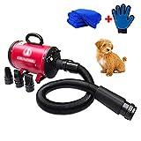 bs-2400 Secador de pelo para mascotas Secador de perros de bajo ruido Secador de mascotas de gran...