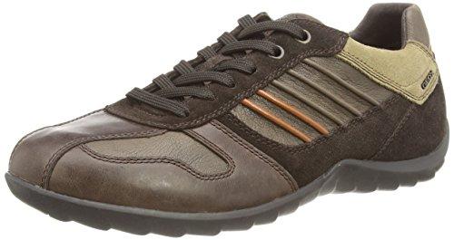 Geox  U Pavel,  Herren Knöchelfreie Sneaker Brown (Coffee/Dk Brown)