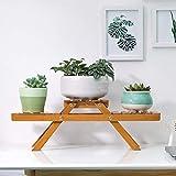 XQY Indoor-Blumenständer, Flower Rack-Massivholz-Stehstand-Wohnzimmer-zusammenklappbarer Balkon-Pflanzenrahmen-einfacher moderner, Haushalts-Blumen-Stand