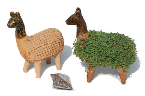 Lassen Sie Ihr eigenes KresseLlama gedeihen (Inklusive Kressesamen). Fair gehandelt. Handarbeit aus Mexiko. Llama.