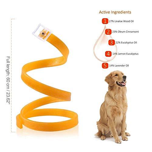Zoom IMG-2 foonee regolabile pet flea collar