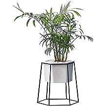 Planta suculenta Maceta Maceta para Interiores, decoración de Pared y Escritorio geométrica Recipiente para Colgar
