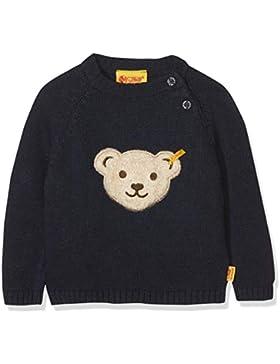 Steiff Baby-Jungen Pullover