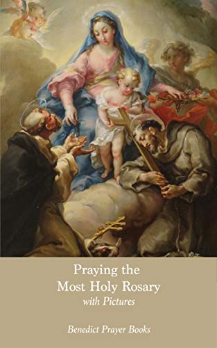 Praying the Most Holy Rosary: with Pictures (English Edition)