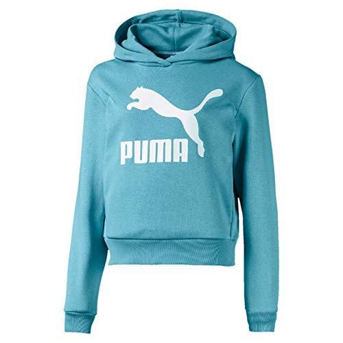 Puma Mädchen Classics T7 Hoody TR G Pullover, Milky Blue, 164