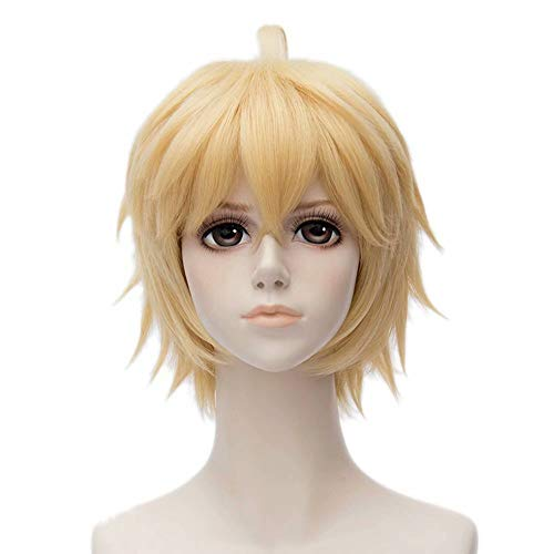 - Blonde Perücken Männlich