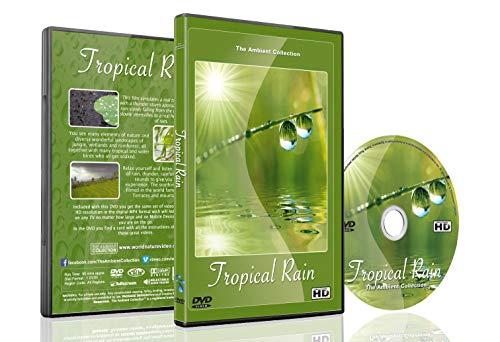Entspannende Natur DVD - Tropischer Regen - Beruhigende Szenen mit Donner Geräuschen gefilmt in den weltberühmten Reisterrassen und Bergseen von Bali (Rain Man-dvd)