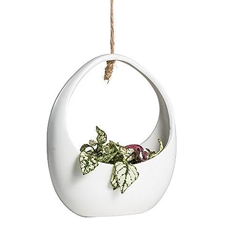Hanging Ceramic Round White Flower Pot Planter Cut Out Vertical Garden