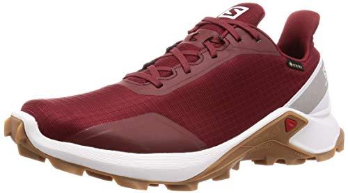 Salomon Alphacross GTX, Zapatillas de Trail Running para Hombre, Rojo Syrah White Gum1A, 42 2/3 EU