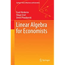 Linear Algebra for Economists (Springer Texts in Business and Economics)